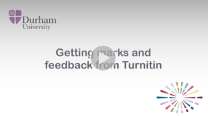 Getting marks and feedback from Turnitin video