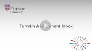 Turnitin assignment inbox video