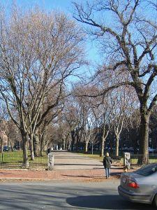 BostonCommAve