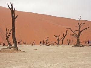NamibiaSaltPan