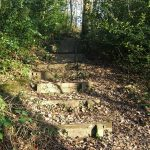 Raintonwood steps