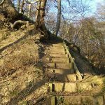 Raintonwood steps2