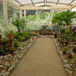 JardimGreenhouse