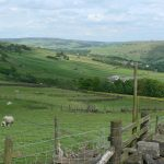 YorkshireWalls