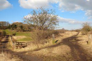 Railways paths towards Pittington